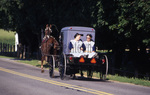 Amish women on back of buggy by Dennis L. Hughes